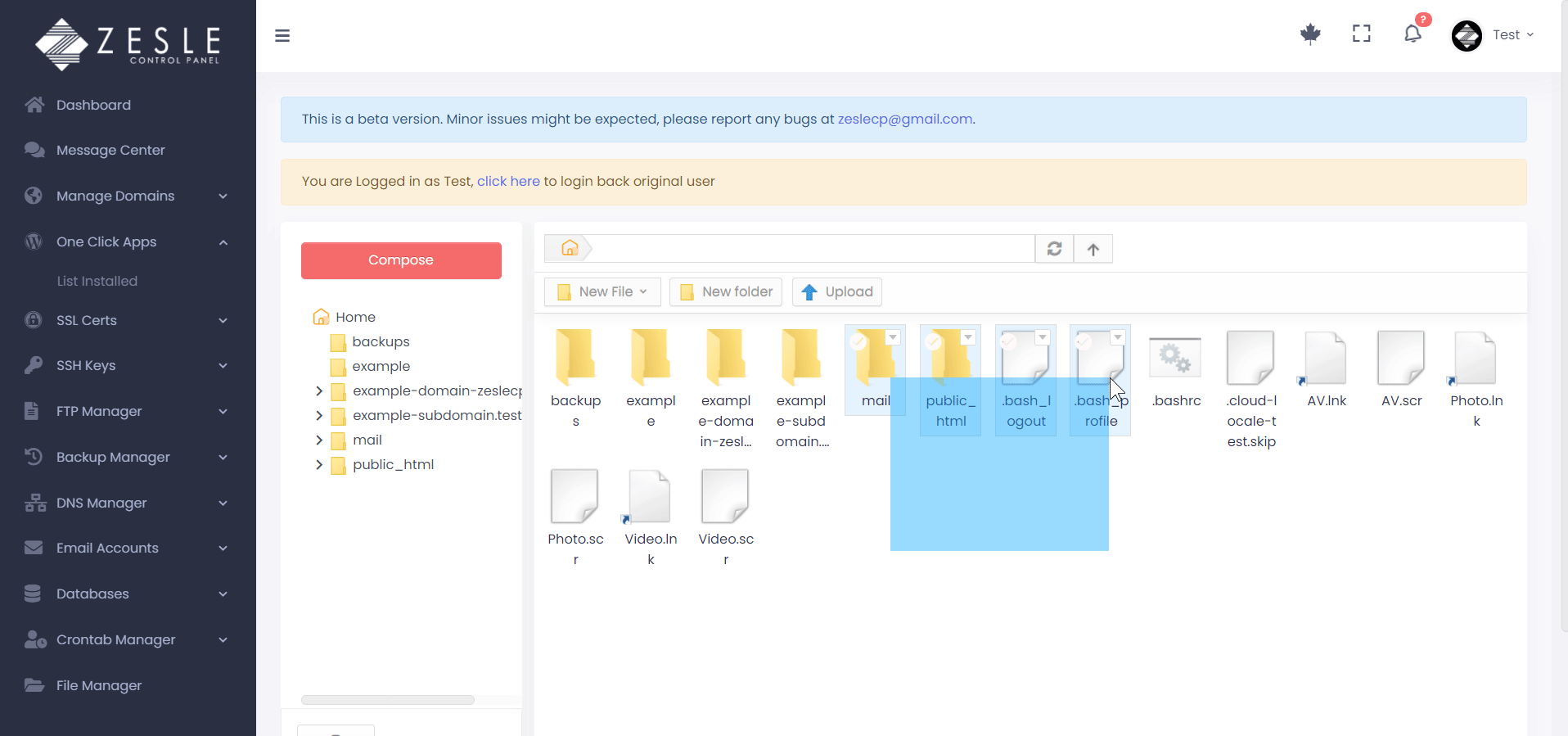 ZesleCP File Manager Features
